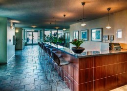 Discovery Condos San Diego - Lounge Room