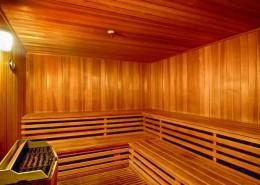 Meridian Condos San Diego - Sauna