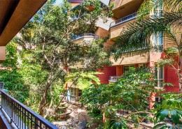 Palermo San Diego Condos - Tropical Landscaped Courtyard